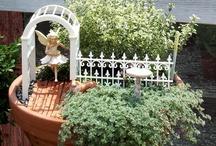 Fairy House & Gardens