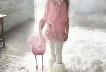 Baby Trends: Flamingos