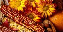 FALL-MY FAVORITE SEASON OF THE YEAR! / Pumpkins, recipes, decorating, art, bonfires, leaves and all things fall and autumn.
