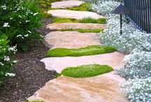 garden inspiration / by Debbie Acree