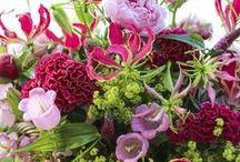 Flower/Bloemig
