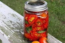 Food Preservation / Canning, freezing, dehydrating etc