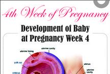Pregnancy Complete Guide / A complete Doctor Guide