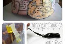homeschool-science / all things science / by Maria Harwell-Gervase