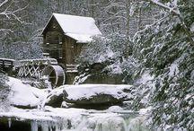 winter / by Janice Basley