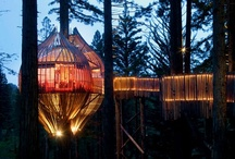 Retreat! (Tree Houses & Creative Places) / Tree houses and creative spaces