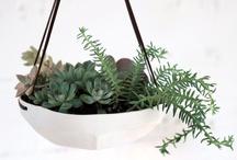 decorate: planters