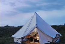 Camping  / by Erma Scranton
