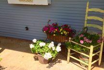 chair planters / by Jeanne Scottie mom