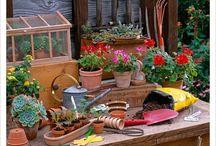 Things for My garden / by Jeanne Scottie mom
