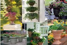 Gardening Ideas / by Jeanne Scottie mom