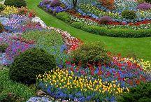 beautiful gardens / by Jeanne Scottie mom