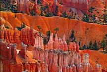 Utah / Our Utah Atlas is designed to help residents and visitors make the most of the wealth of attractions that Utah has to offer. You'll find hundreds of recreation sites, fishing spots, and hunting areas as well as a myriad of other things to do. The Landscape Maps show all drivable Utah roads, classed by surface and purpose, and thousands of campgrounds along with other destinations. Large-scale metro maps of the Wasatch Front are also included.