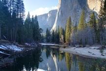 Yosemite National Park / by Benchmark Maps