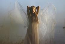 Angels / by Gypsy