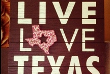 Texas, My Texas / by Cheryl Sanders