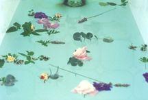 Inner Cleanse / by Myrda Monasterial Vale