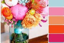 Color Pallettes / color pallettes, colors, design, paint colors, paint