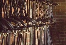 Tack Room / Tack rooms that equestrians dream of! Saddles and bridles galore...