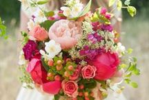 Floral Lovelies / by Karen MacKay
