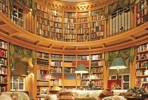Dream Libraries & Reading Spaces...ONE DAY! / by Shelley Kirk
