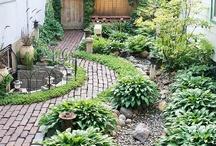 Gardening..... / by Wendy Zebregts Marshall