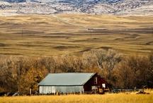 Barns / by Leslee Kistler