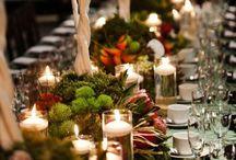 Vegan Thanksgiving! / by Elise Hollandsworth Hartmann