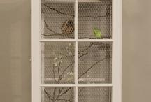 Birds, Bird Houses, Bird Feeders, Aviaries / by Bonnie Reid