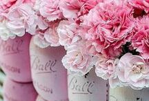 pink power / All things PINK, breast cancer awareness ideas, inspirational breast cancer quotes, pink recipes, pink crafts, pink gifts, pink pictures and more pink
