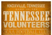 Vol Nation  / I SAID ITS GREAT TO BE A TENNNNESSEE VOL!!! / by Heather Clark