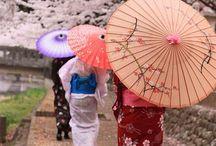 Japan / by Melanie English