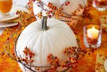 autumny holiday celebrations / by Melana Denyer
