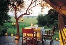 Africa's Top Luxury Safaris / Africa's award winning luxury safari lodges continue to astound and amaze with their service excellence, incredible game-viewing and guiding and unparalleled overall safari experiences. For the ultimate in luxury, a Go2African recommended safari is your key to a bespoke adventure. / by Go2Africa