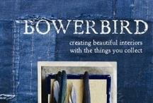 Bowerbird by Sibella Court / by The Society Inc. by Sibella Court