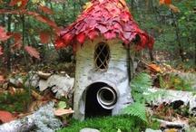 garden / by Julie Stuart