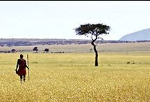 Kenya Safaris / Synonymous with safaris and home to the must-see Wildebeest Migration, Kenya delivers top-notch game viewing, beautiful beaches and enriching cultural encounters with the colourful Maasai people.