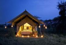 Africa's Romantic Beds / There is romance to be discovered in spending your days in an untamed wilderness that has been largely untouched for millennia and your nights in the utterly glamorous and impeccably comfortable beds of some of Africa's top destinations. / by Go2Africa