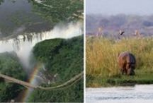 Best of Zimbabwe / Zimbabwe is rightfully known as one of Africa's most rewarding game-viewing destinations, with well-educated guides who speak excellent English (Zimbabwe's education system is one of the best in southern Africa). Not only is Zimbabwe a safe & secure Big 5 safari destination but it is also home to parks like Mana Pools, Matabo, Hwangea and  Matusadona National Parks, and of course, Victoria Falls. Come visit!  http://www.go2africa.com/africa-travel-blog/30930/should-i-travel-to-zimbabwe
