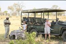Mobile Camping in Botswana / Mobile camping remains popular thanks to the winning combo of authentic & comfortable under canvas safari experiences. You stay in tented camps in private concessions, national parks & game reserves, moving every few days by road or air to a new location. All important creature comforts are still in place like flush loos, hot showers, charging stations & delicious food... plus you get much, much closer to the wilderness in a maximum group of eight travellers: it's crowd free, luxury camping!