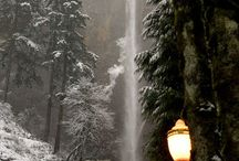 >>Snow<< / by Cathy Shrader Krupa