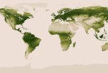 7: World Geography