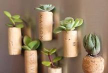 Garden Recycling Ideas