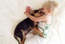 PETS + BABIES / Because this deserves its own category. ;)