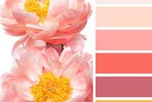 Color Palettes / color palettes I like (for decorating, collage projects and more)