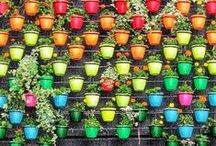 Huerto / Kids' gardening ideas