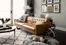 Living Room / by Allison K