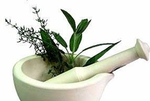 All about Herbs-For Your Health / by Debi