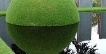Зеленый Дизайн и камни