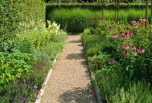Borders/Planting / by Mathijs Wolfs